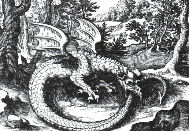 low_dragon