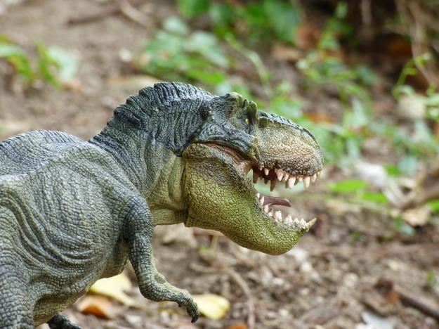 tyrannosaurus-855200_960_720